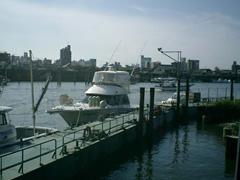 ニューポート江戸川